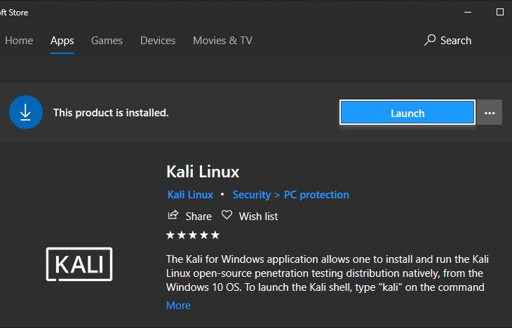 Fixing Kali Linux on Windows WSL2 | Expert on Something